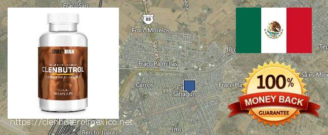 Where to Buy Clenbuterol online Ciudad Sahagun, Mexico