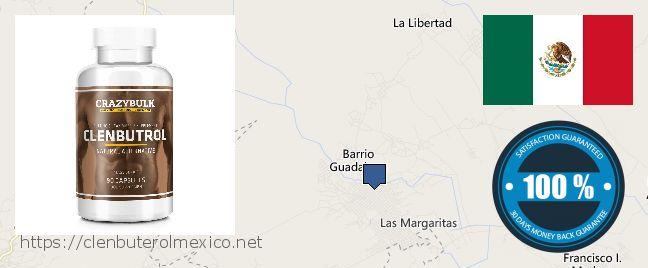 Where to Buy Clenbuterol online Las Margaritas, Mexico